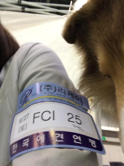 長くさぼりました。韓国から_f0126965_14255474.jpg