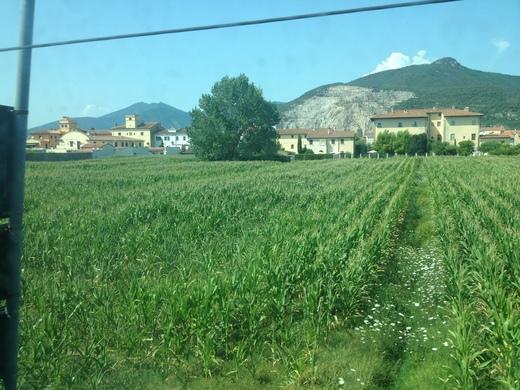 イタリアの車窓から ピサ中央駅ーエンポリ_a0136671_10541277.jpg