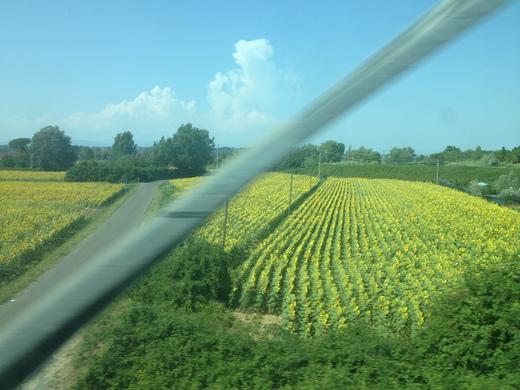 イタリアの車窓から ピサ中央駅ーエンポリ_a0136671_1058566.jpg