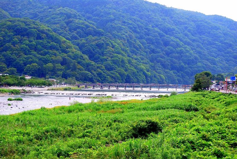 祇園「さゝ木」 祇園祭の山鉾 嵐山の竹林_b0165872_23172859.jpg