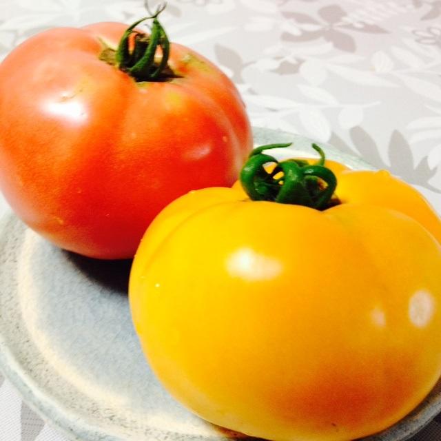 虹色トマト_f0204295_10105318.jpg