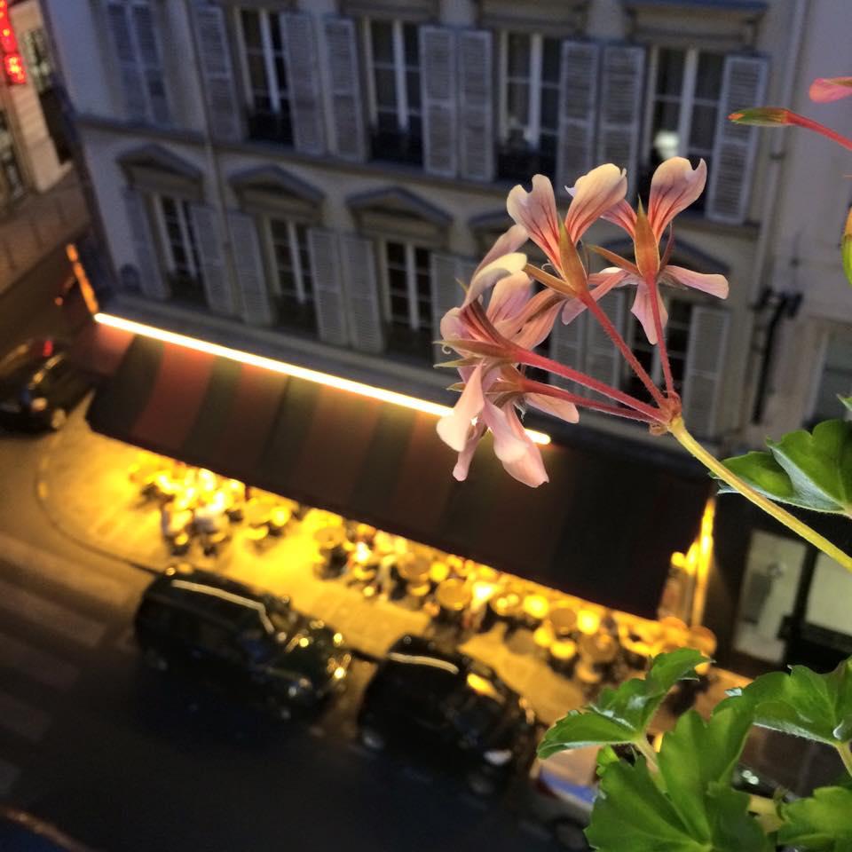 パリの花_b0105897_1552025.jpg