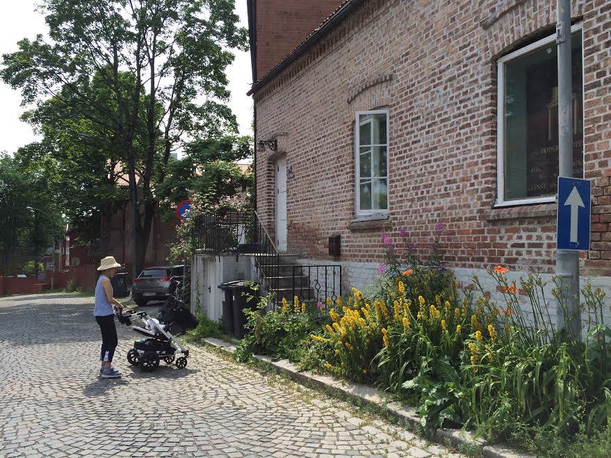 オスロの夏の散歩道_a0229904_3465854.jpg