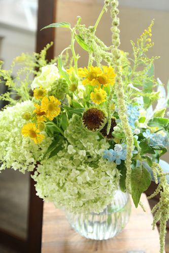 かわいい初夏花_d0086634_16100990.jpg