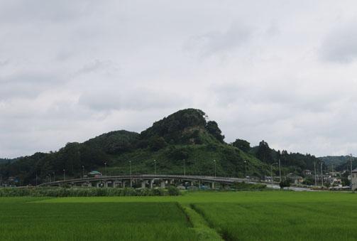 曇り空と緑のじゅうたん(*^-^*)_c0140599_11171176.jpg