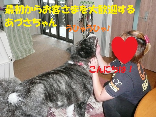 f0121712_050183.jpg
