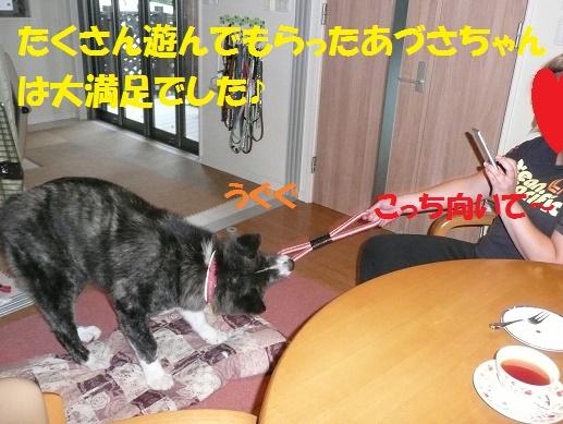 f0121712_0574488.jpg