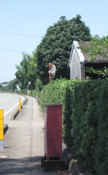 鉄砲小路 (てっぽうこうじ)  菊陽町_b0228113_14361042.jpg