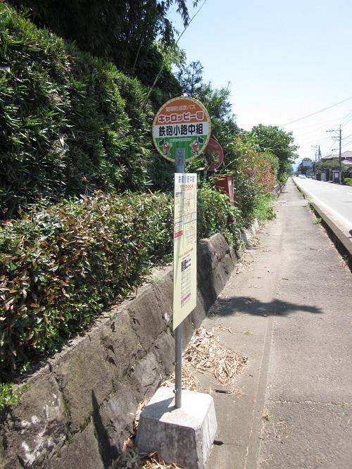 鉄砲小路 (てっぽうこうじ)  菊陽町_b0228113_14364791.jpg