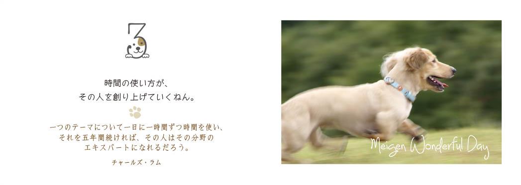 f0355165_16374451.jpg