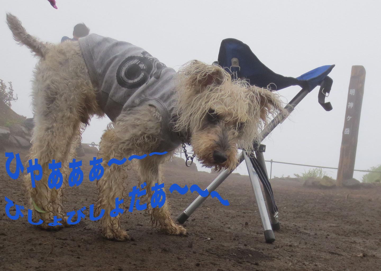 箱根・明神ヶ岳を登って来ました〜_a0109467_22341011.jpg