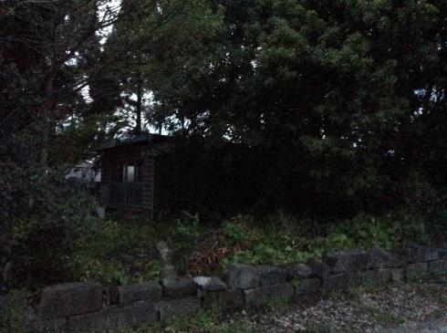 アナーセン引越を終えて・・・・大木に見守られた空間_b0137969_23010645.jpg