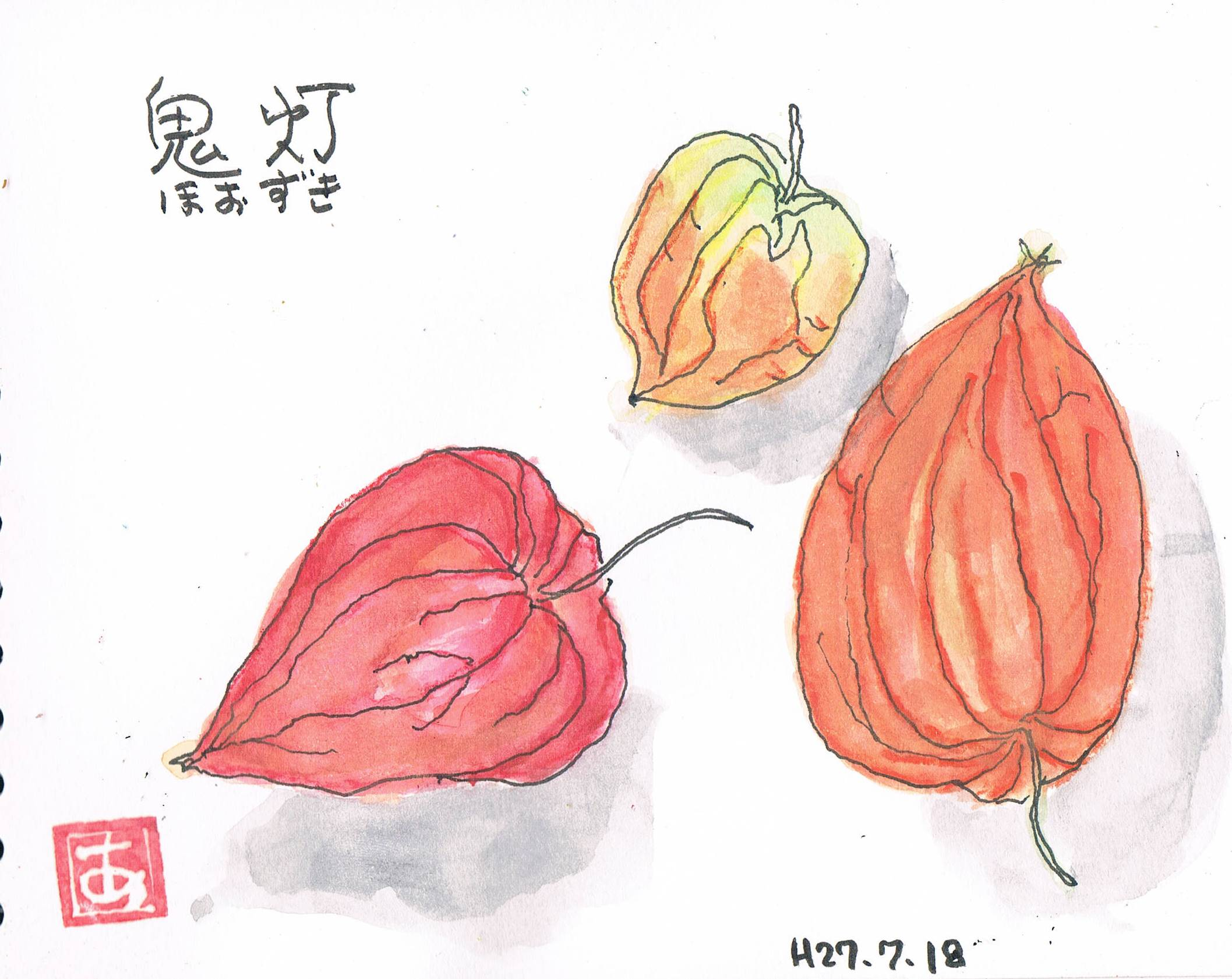 鬼灯_e0232277_104215.jpg