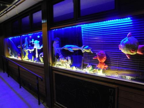 海の日 ~ K様水族館ライトアップ ~_e0222340_20135485.jpg