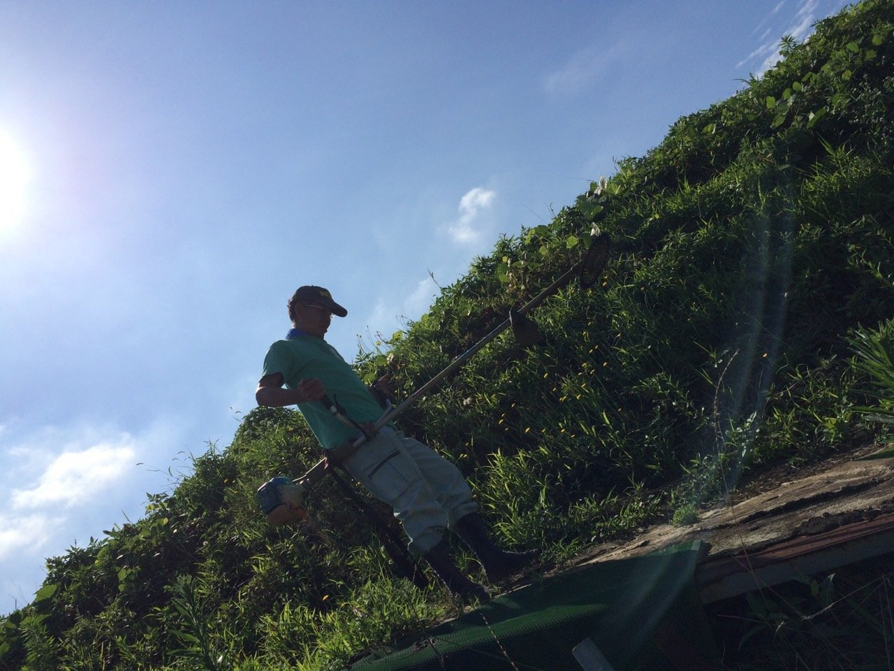 昨日梅雨明けしたらしい・・・畑 猛暑です 草刈り 収穫 今朝は4人体制 水分補給しながら_c0222448_12181864.jpg