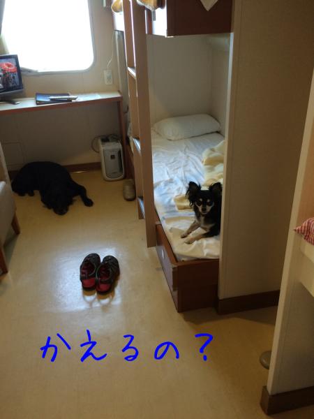 博多・天草へ③_e0244283_18214873.jpg