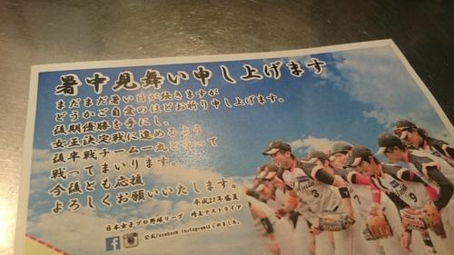 「女子プロ野球アストライヤー」_a0075684_22564371.jpg