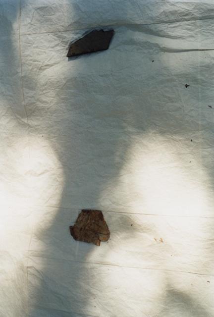 COSMIC WONDERと工藝ぱんくす舎  「かみのひかりのあわ 水会」展     Center for COSMIC WONDERにて  _e0197011_21452437.jpg