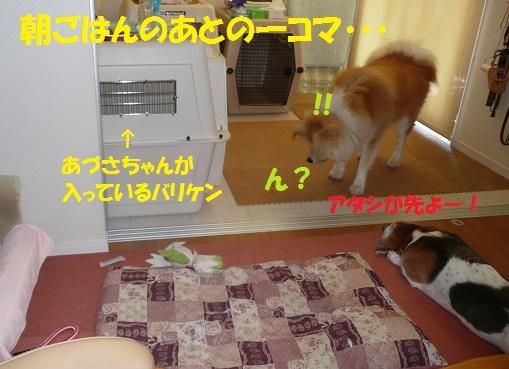 f0121712_16301185.jpg