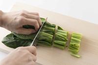 野菜保存の新常識!目からうろこの冷凍術/文:島本美由紀_a0083222_15282235.jpg