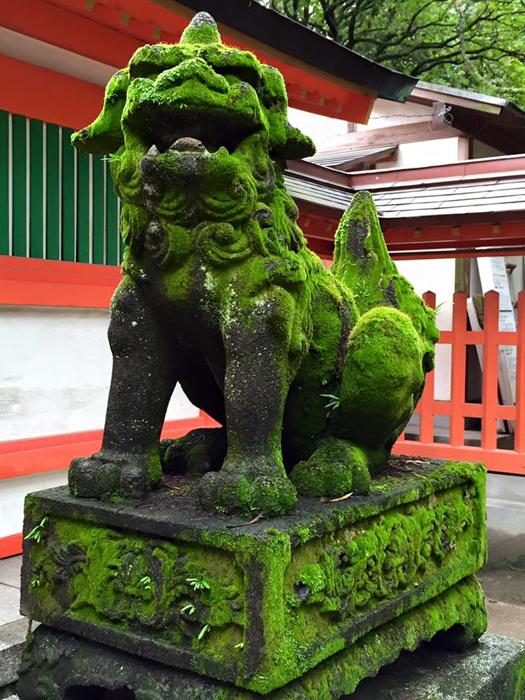 住吉神社(福岡市博多区) / iPhone 6_c0334533_22590971.jpg