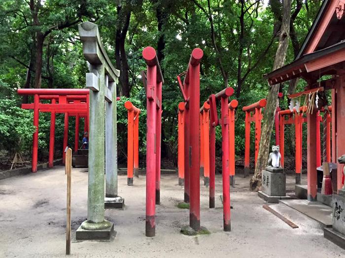 住吉神社(福岡市博多区) / iPhone 6_c0334533_22592199.jpg