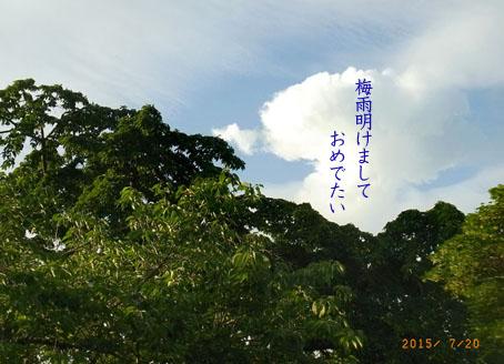 b0075364_22252872.jpg