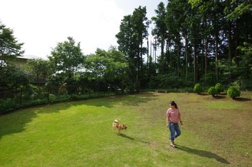 【桃旅 #004】愛犬とのんびり過ごせる宿@プチホテル マイカ 伊豆高原_c0364176_20505889.jpg