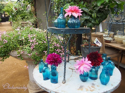 Petersham Nurseriesの紫陽花とダリア_f0238789_1929533.jpg
