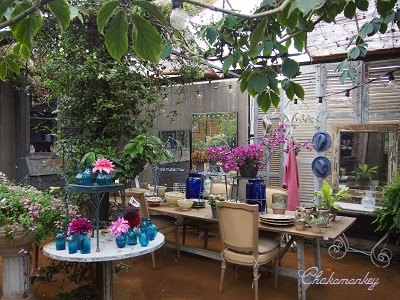 Petersham Nurseriesの紫陽花とダリア_f0238789_19311551.jpg