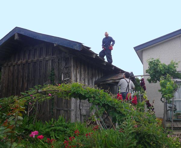 不思議な一日は蔵の屋根の修理から~ねこ歩き写真展、ドライブなど♪_a0136293_17285693.jpg