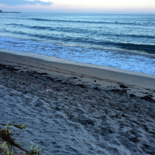 海の日の海_c0172504_14475868.jpg
