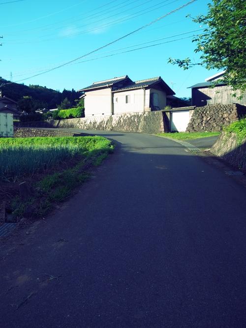 b0036636_19131350.jpg