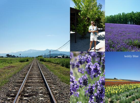 Hokkaido trip, Summer of 2015  北海道旅行 富良野_e0253364_17565478.jpg