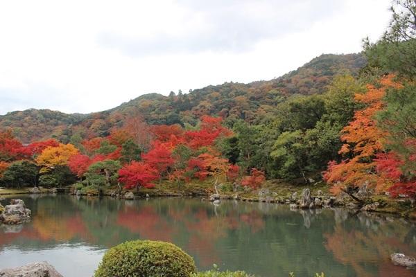 嵯峨野~嵐山_e0340671_23134250.jpg