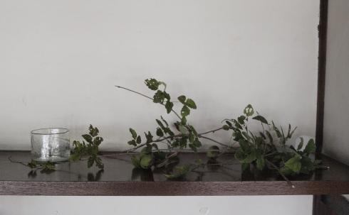 大澤英美さんの「山の花」_c0155980_00590287.jpg