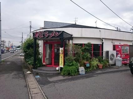 桜ラーメン笠松店  特製赤みそチャーシューメン ¥950_b0042308_14220438.jpg