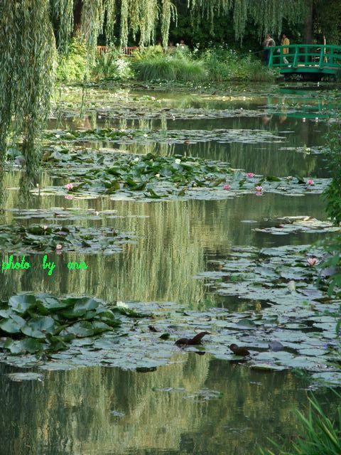 f0295238_23500511.jpg
