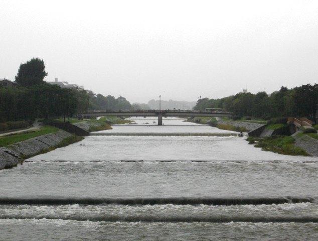 梅雨明けはいつも雨_e0230141_09374548.jpg