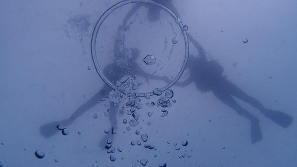 富士山の麓!本栖湖体験ダイビング!_a0226058_149434.jpg