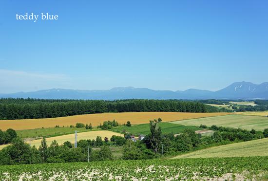 Hokkaido trip, Summer of 2015  北海道旅行 美瑛_e0253364_1404347.jpg