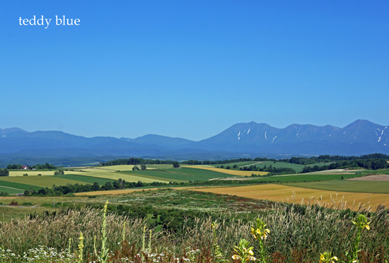 Hokkaido trip, Summer of 2015  北海道旅行 美瑛_e0253364_1411180.jpg
