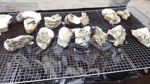 鳥取の天然岩ガキは、お盆までが食べごろです。_f0009169_6391935.jpg