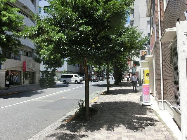 「猛暑日」一歩手前の東京で「立地適正化計画の調査・策定」の研修_f0141310_7174668.jpg
