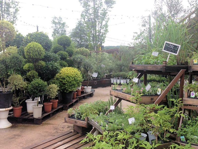 the Farm_d0086634_15274290.jpg