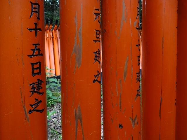 伏見稲荷大社_b0248150_15184532.jpg