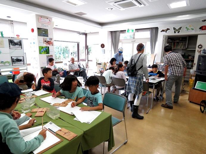夏休み自由研究イベント報告&カワセミ情報_d0121678_14242297.jpg