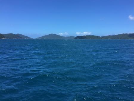 大島海峡、波立ってきたー。_e0028387_14571052.jpg