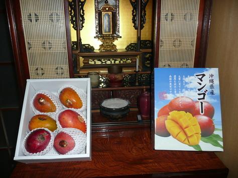 2015年7月29日 沖縄中学校同級生 金城幸栄君から中元にマンゴ その3_d0249595_18413126.jpg