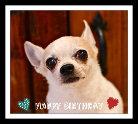 Happy Birthday ☆_d0060413_1848271.jpg
